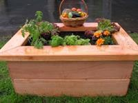 Organic Raised Bed Packages